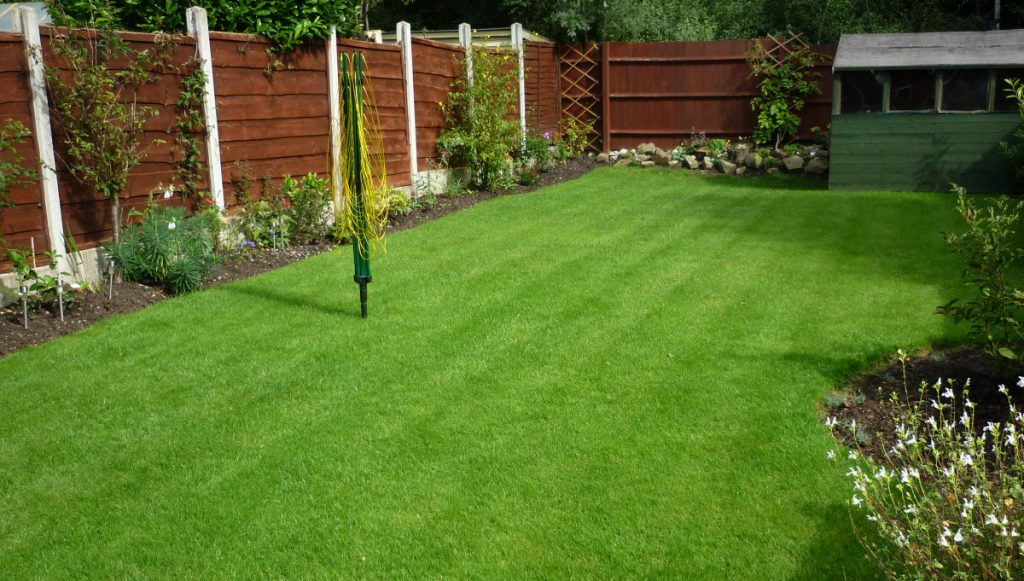 A back garden lawn in Exmouth