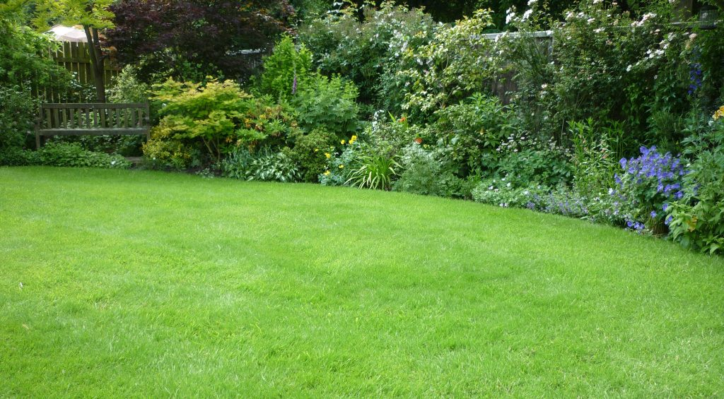 A beautiful lawn and garden border