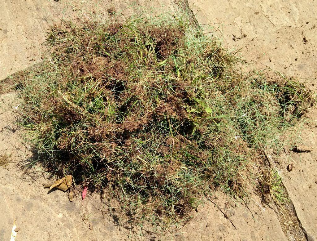 A bundle of plastic turf netting