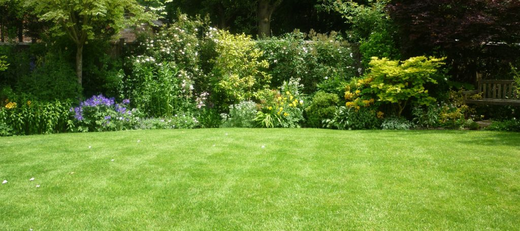 A green lawn and a beautiful herbaceous border