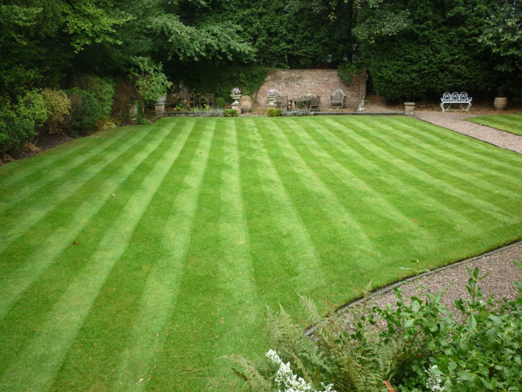 A beautiful ornamental lawn