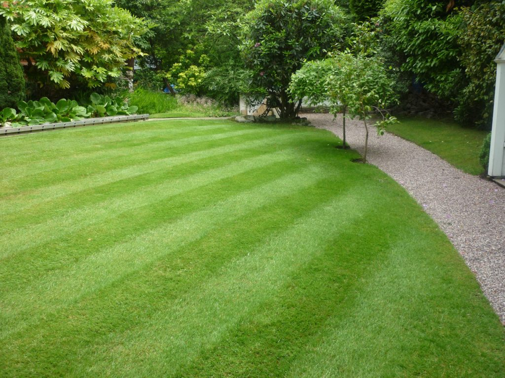 Beautiful striped side lawn