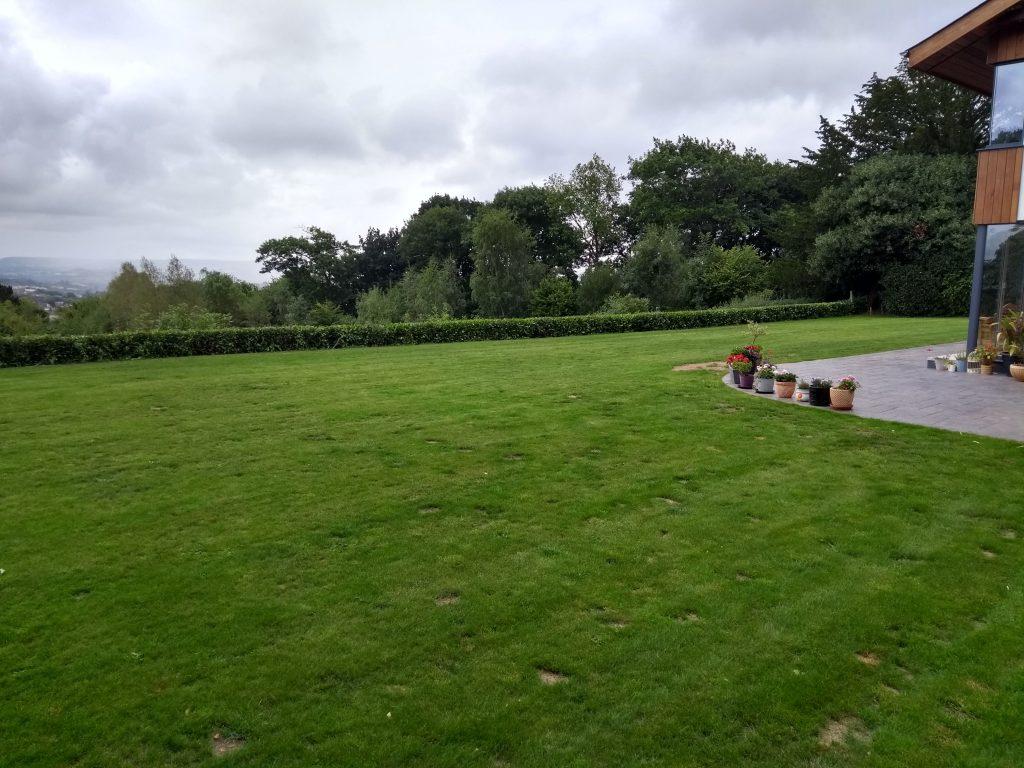 Exeter Lawn Regeneration - August 2018