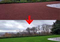 Exeter Lawn Regeneration