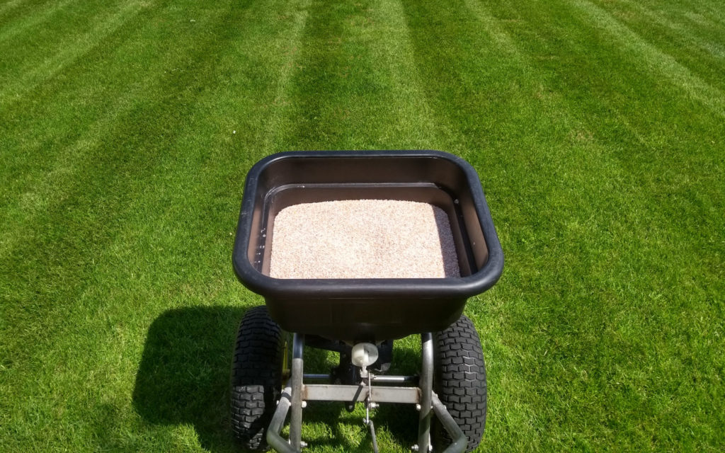 Feeding a lawn granular lawn feed with a spreader.