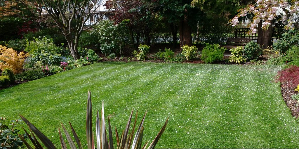 A beautiful front lawn in Sidmouth