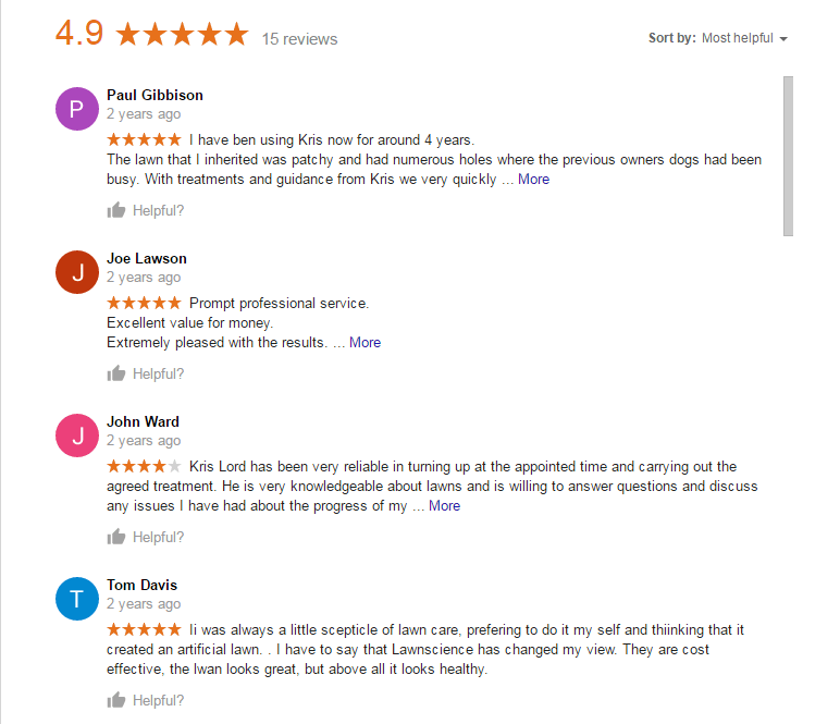 Google Reviews Page