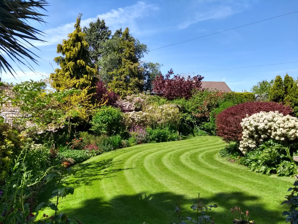 A beautifully mown lawn in Exmouth. You do not have to remove the grass clippings of your mow your lawn very regularly.