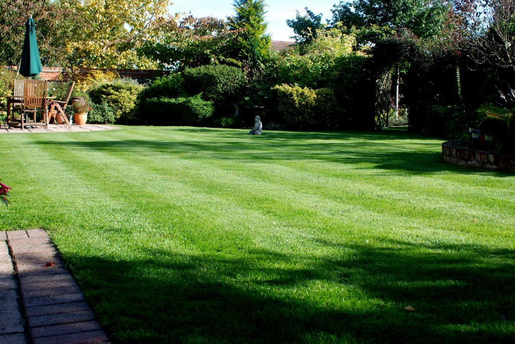 A lovely green lawn