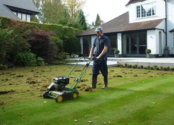 Kris Lord scarifying a lawn