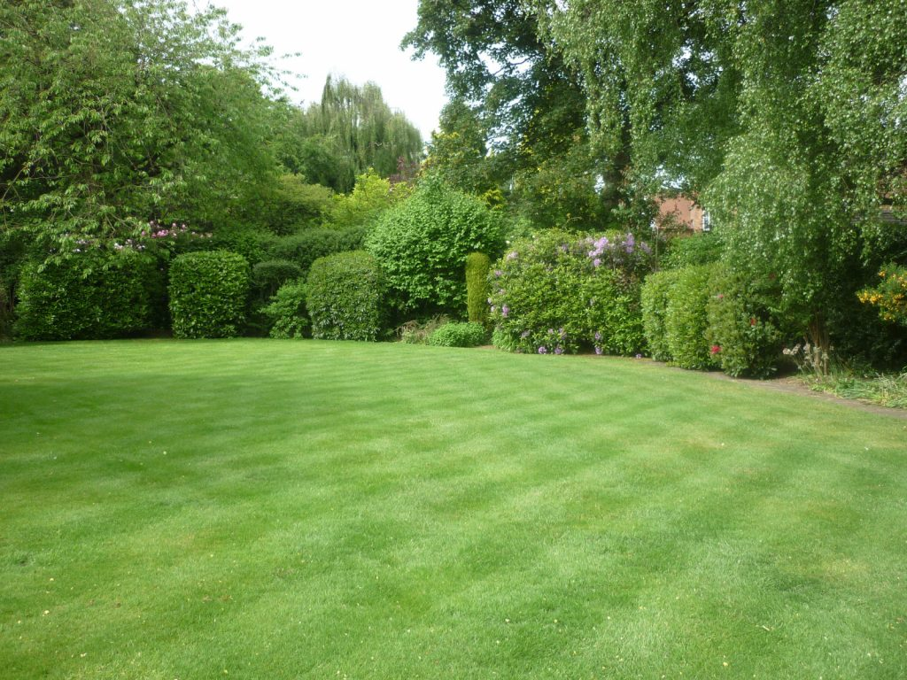 Lovely large lawn.