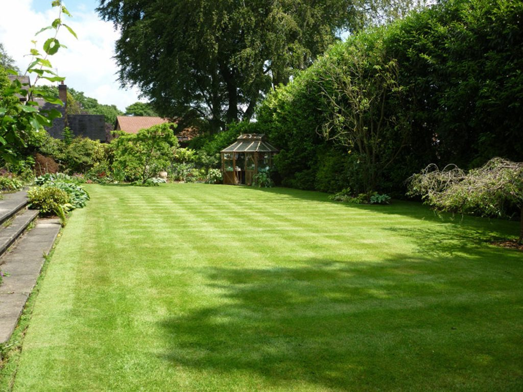Large family lawn with greenhouse