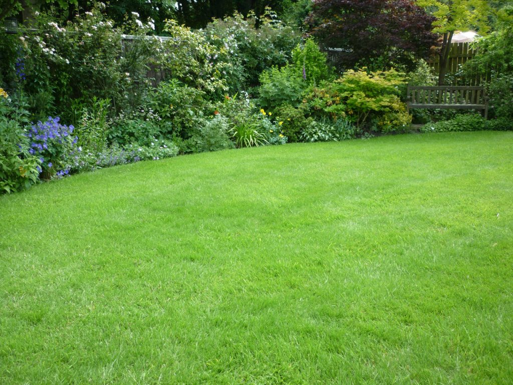 Lawn showing off an herbaceous border