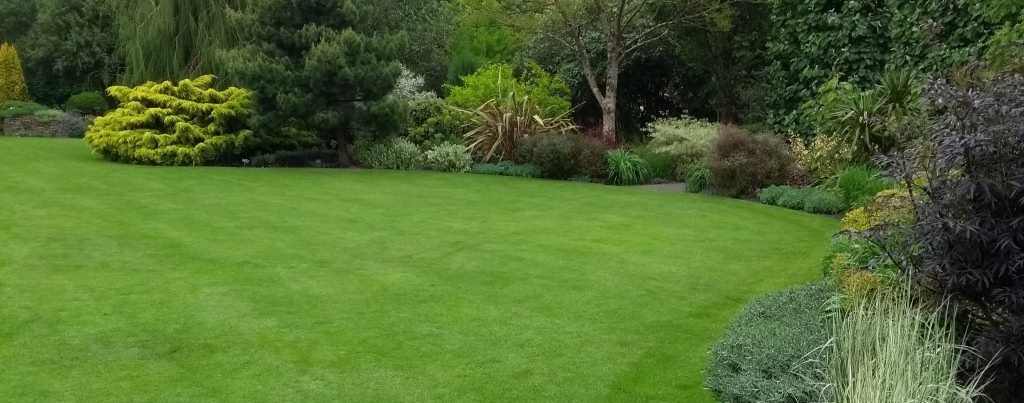 Lawn care exeter