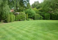 A lawn in Cheadle Hulme