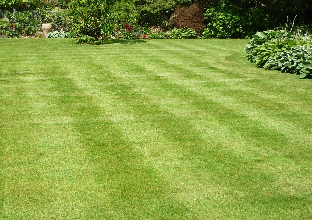A photo of a lawn taken in Hale Barns, Cheshire.
