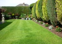 Lawn in Spring
