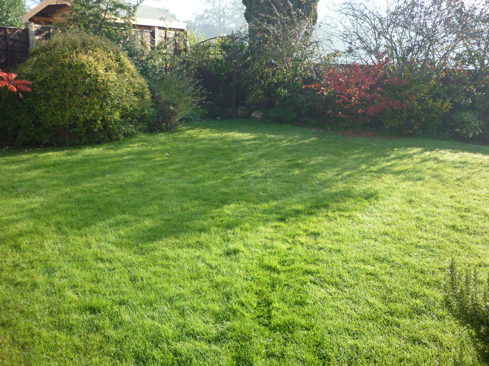 A beautiful lawn in Whipton, Exeter