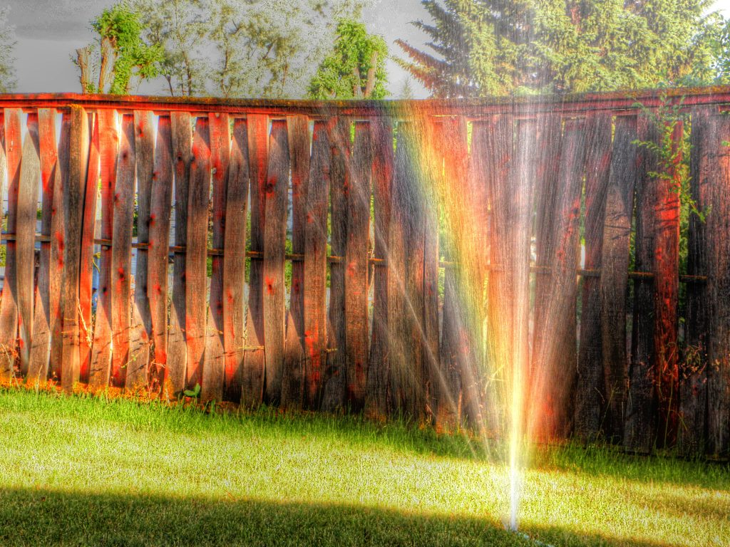A rainbow in the mist of a lawn sprinkler