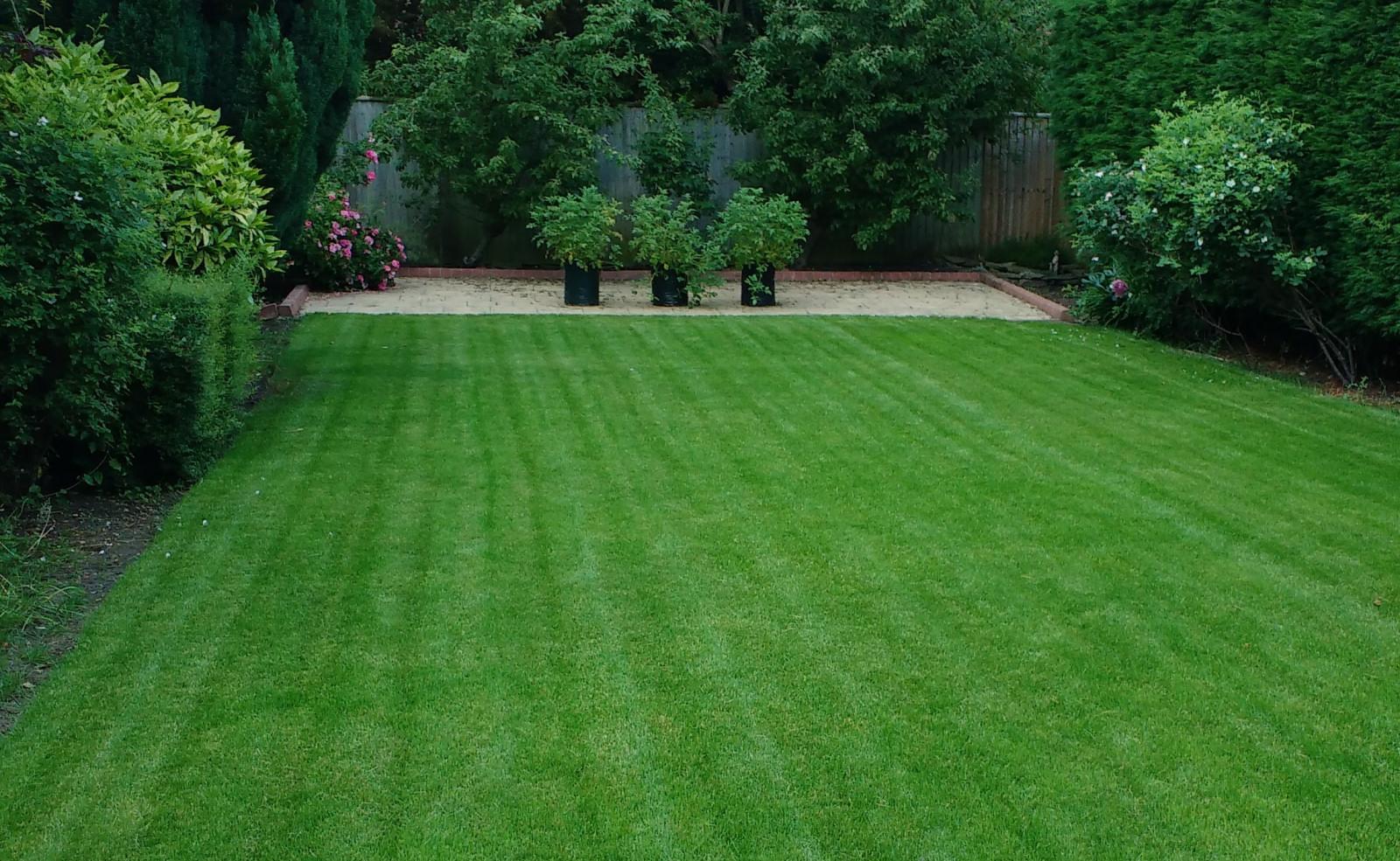 A new, green lawn