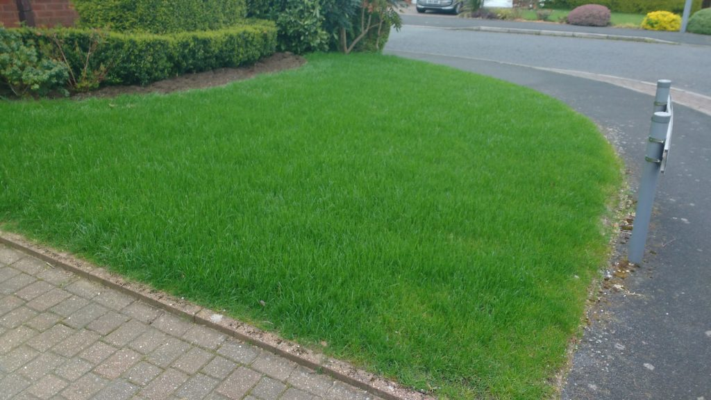 A brand new, seeded front lawn.