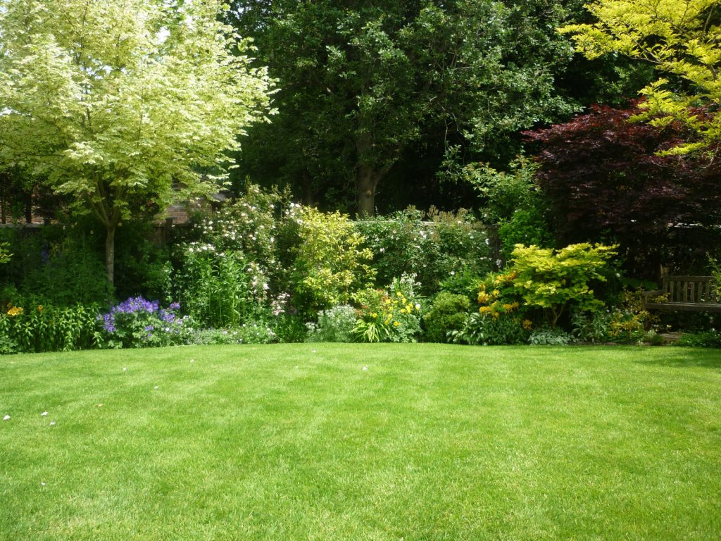 A superb lawn as part of a garden