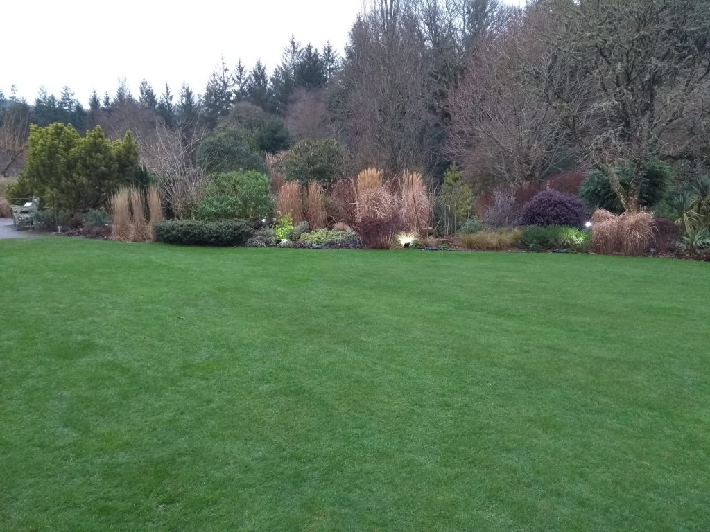The foliage garden and lawn at RHS Rosemoor in Devon