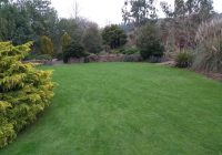 The lawn on the foliage garden at RHS Rosemoor