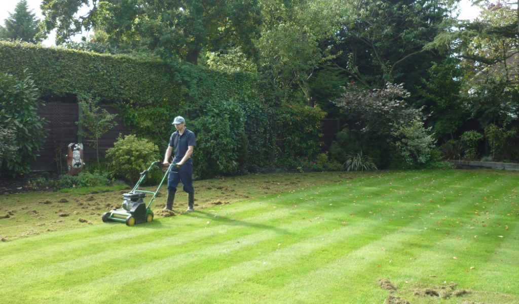 The Lawn Man using a scarifier to scarify a lawn. One of the main lawn care services provided.