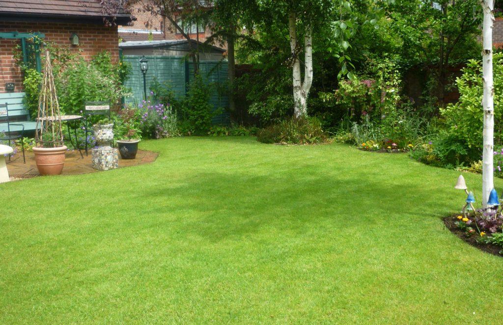 A neat back garden lawn.